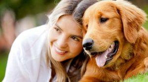 Ümraniye Köpek Eğitim Merkezi