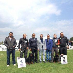 Avcılar Köpek Eğitim Çiftliği İstanbul