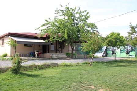 Ataşehir köpek eğitim çiftliği