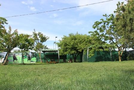 Şişli Köpek Eğitim Çiftliği